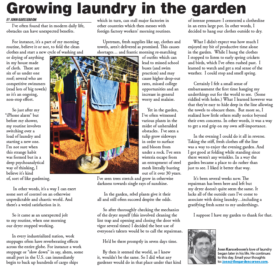 Growing laundry in the garden