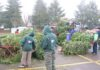 Boy Scout troops 35 and 530 recycling trees for the 2017 holiday season.
